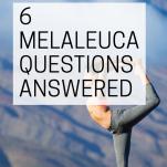 Melaleuca MLM